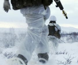 Nordic Soldiers